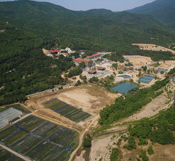 Το πρόγραμμα περιβαλλοντικής αποκατάστασης της Ελληνικός Χρυσός